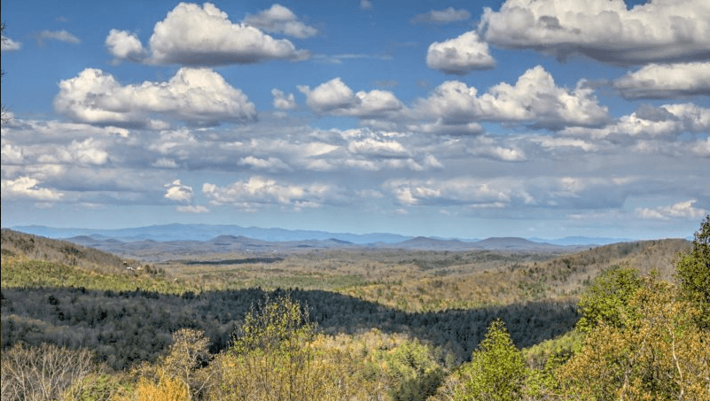View Top